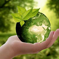 eco-friendly-products